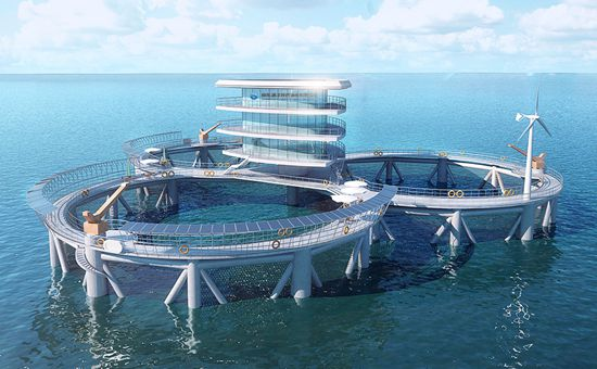 物流公司_现代海洋牧场-山东海洋现代渔业有限公司